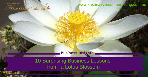 10-surprising-business-lessons-from-a